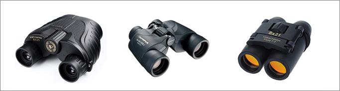 birdwatching binocular reviews