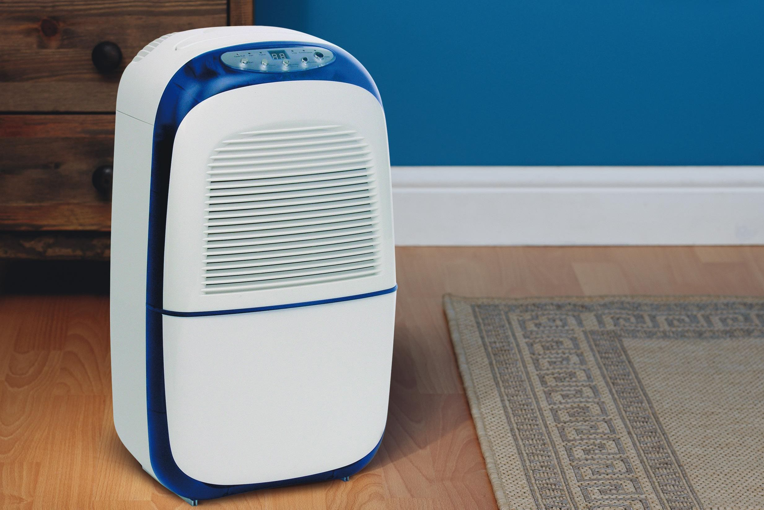 best Dehumidifier