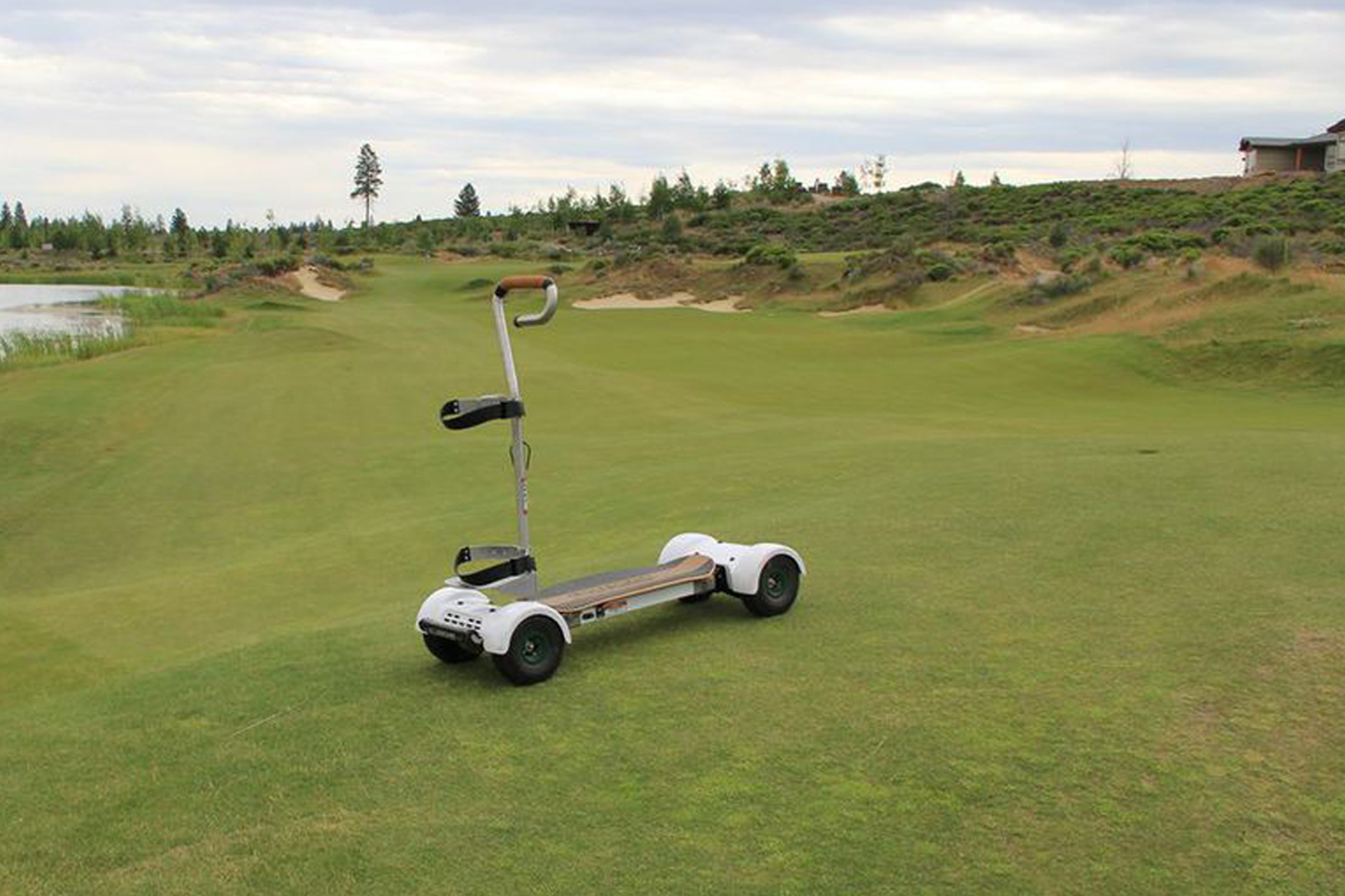 Best Electric Golf Carts Of 2018 Electric Golf Trolley