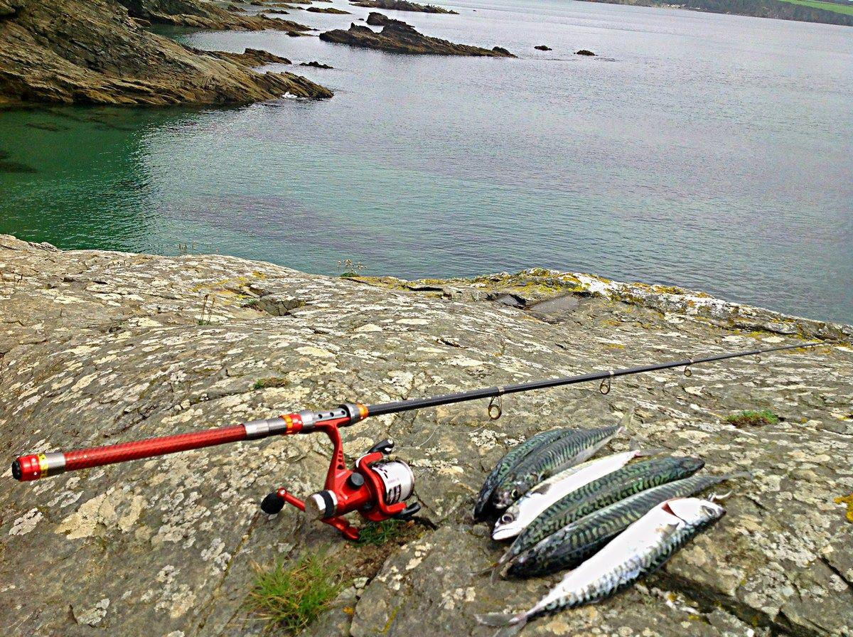 Best Telescopic Fishing Rods 2020 | Top 10 Reviewed