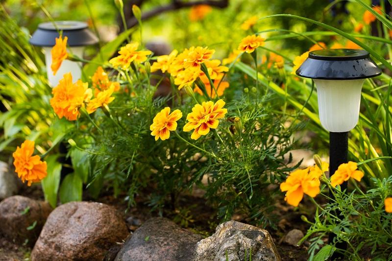 How Good Are Solar Garden Lights