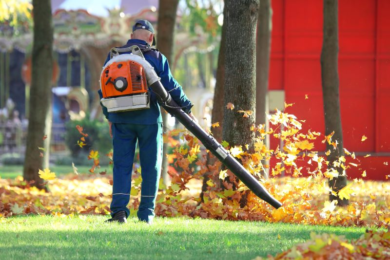 Best Garden Vacuums For 2019